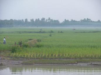 Bangladesh-DSCF7347.JPG