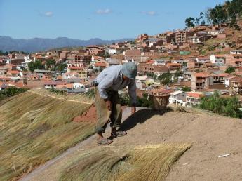 Bolivia-DSCF0310.JPG