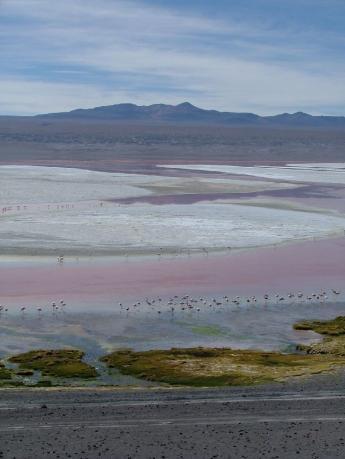 Bolivia-Uyuni-DSCF0025.JPG