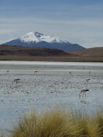 Bolivia-Uyuni-DSCF0071.JPG