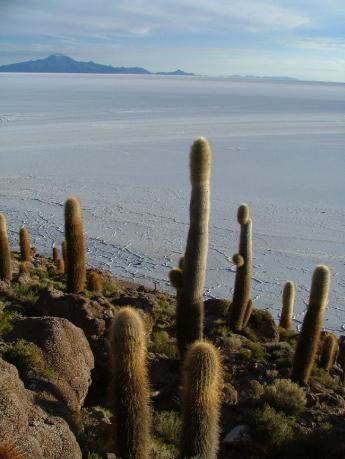 Bolivia-Uyuni-DSCF0159.JPG