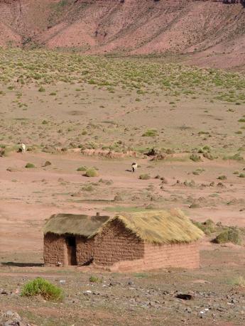 Bolivia-Uyuni-DSCF9881.JPG