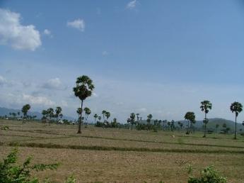 Cambodia-Dscf2102.jpg