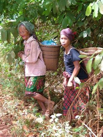 Cambodia-Ratanakiri-Dscf1503.jpg