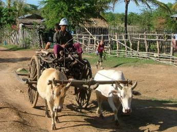 Cambodia-Ratanakiri-Dscf1609.jpg