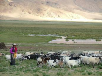 China-Tibet-DSCF5139.JPG