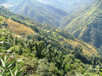 India-Sikkim-DSCF6724.JPG