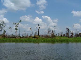 Indonesia-Kalimantan-DSCF5934.JPG