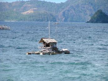 Indonesia-Sulawesi-DSCF7297.JPG
