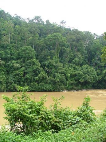 Malaysia-Dscf3365.jpg