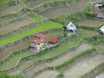 Philippines-Luzon-DSCF6909.JPG