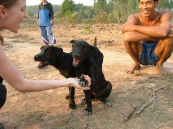 Thailand-DSCF1518.jpg