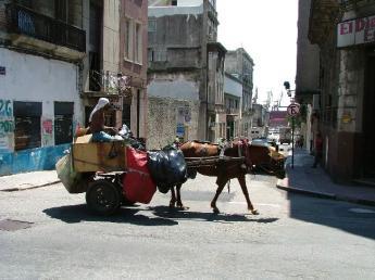 Uruguay-Montevideo-DSCF9280.JPG